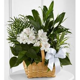 Happy Gardening Basket