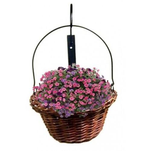 Willow hanging basket