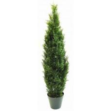 4' Cedar Tree - Silk