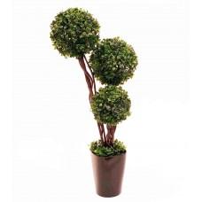 """23"""" Leucondendron Topiary - Artificial"""