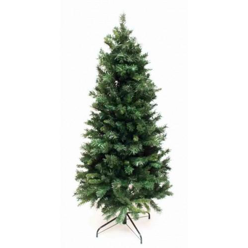 10' Slim Diana Pine Tree